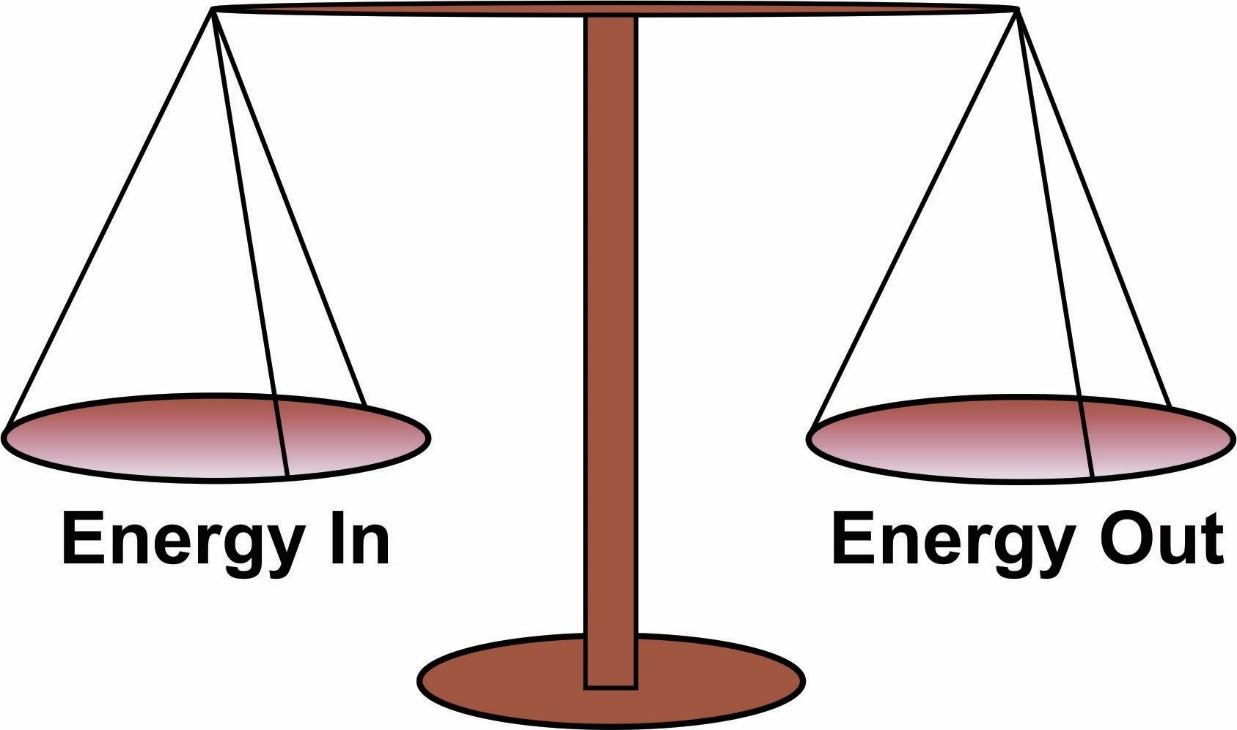 CICO: Metabolisme en energiebalans